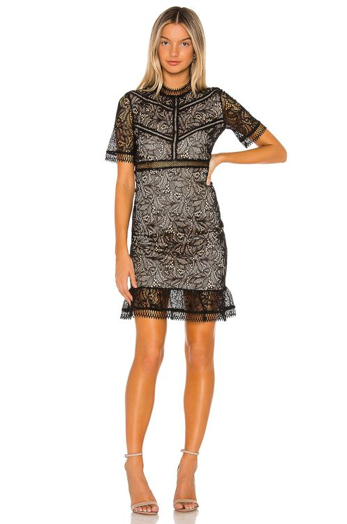 Bardot Theodora lace Dress