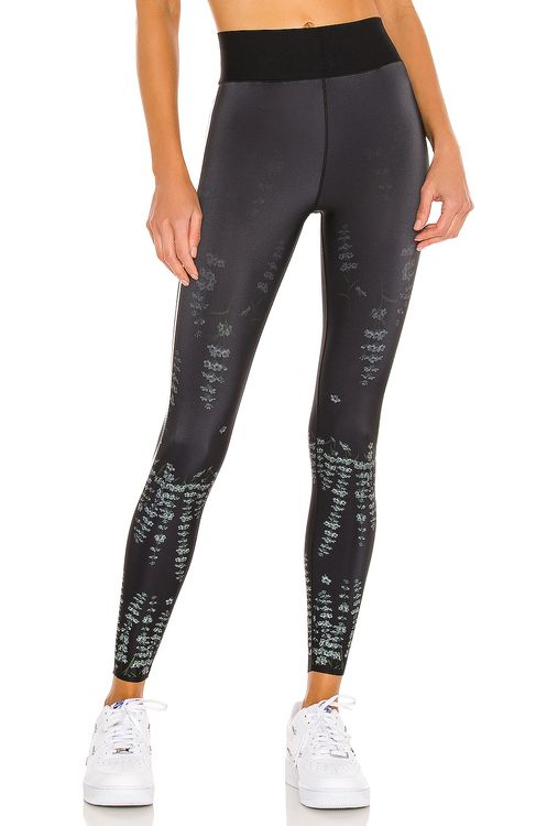 Ultracor Muscari Ultra Legging